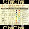Chakra coloured foot chart