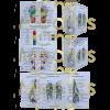 Chi medics reflexology chart