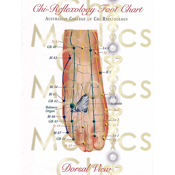 Chi Medics via the feet chart dorsal view