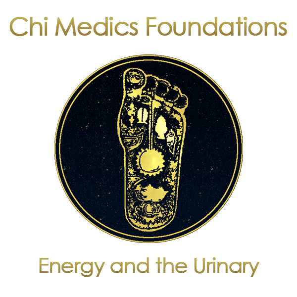 Chi-Medic-Courses-Energy-and-the-Urinary-System